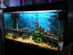 Deko Idee Aquarium