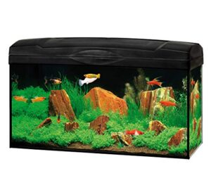Dehner Gute Wahl Aquarium