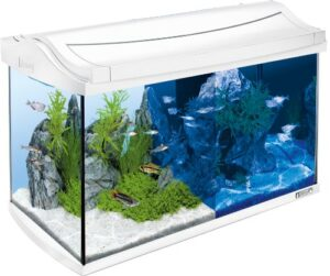 Tetra AquaArt Evolution Line LED Aquarium-Komplett-Set